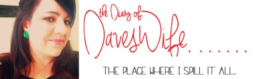 The-Diary-of-DavesWife-500x156