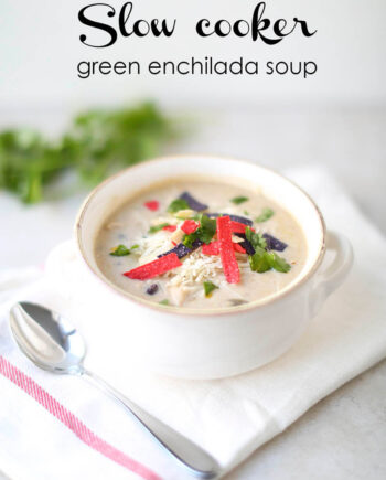 bowl of green enchilada soup
