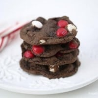 Chocolate peppermint cookies - a chewy, fudge-y cookie topped with peppermint candies. The perfect holiday cookie!