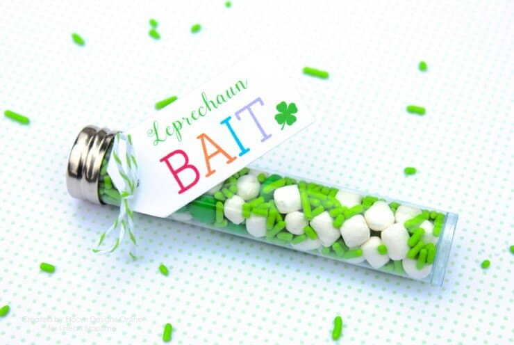 Leprechaun bait with free printables -cute idea for kids on Saint Patrick's Day!