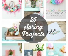 25 Spring Projects