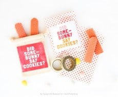 Easter Bunny Printable Party Favor Labels by Design Eat Repeat for I Heart Naptime!