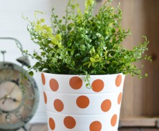 polka-dot-house-plant-pot