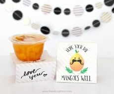 FREE Fruit Cup School Lunch Printables