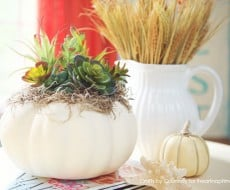 DIY Faux Fall Succulent Pumpkin Craft on iheartnaptime.com