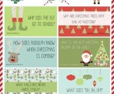Christmas Lunchbox Jokes