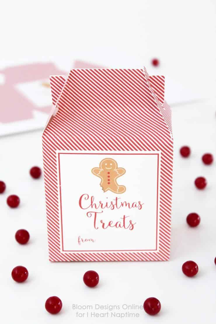 Christmas Treats Boxes