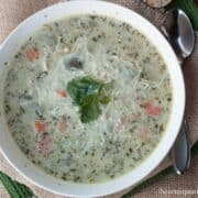bowl of chicken orzo soup