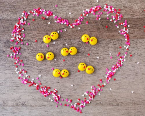 Easy Chocolate Love Birds made with Reese's pieces, sprinkles, frosting and a peanut butter cup. The perfect way to say I love you!