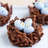 chocolate egg nest