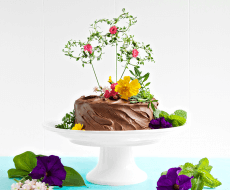 Thyme Butterfly Cake Topper - an elegant and easy DIY to dress up a cake for any occasion!
