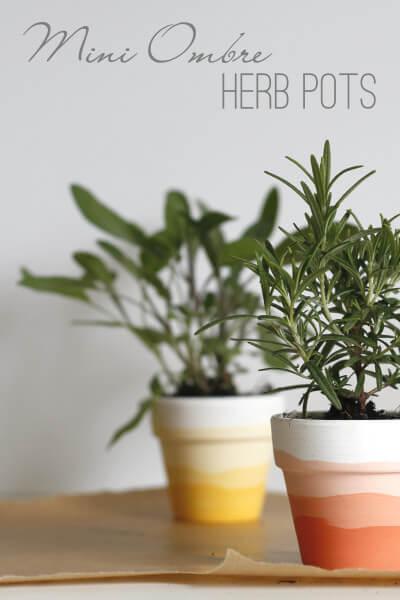 Mini-Ombre-Herb-Pots-pin-400x600