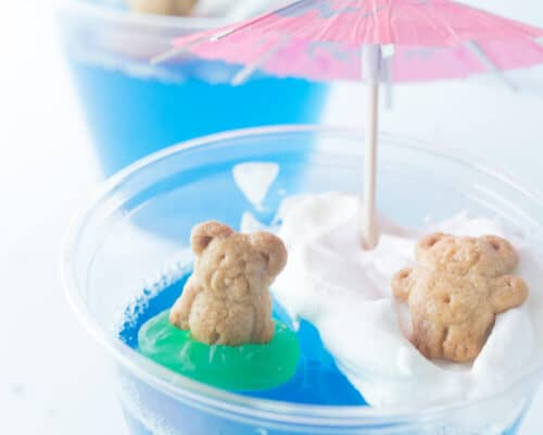 teddy bear jello pool cup with mini umbrella