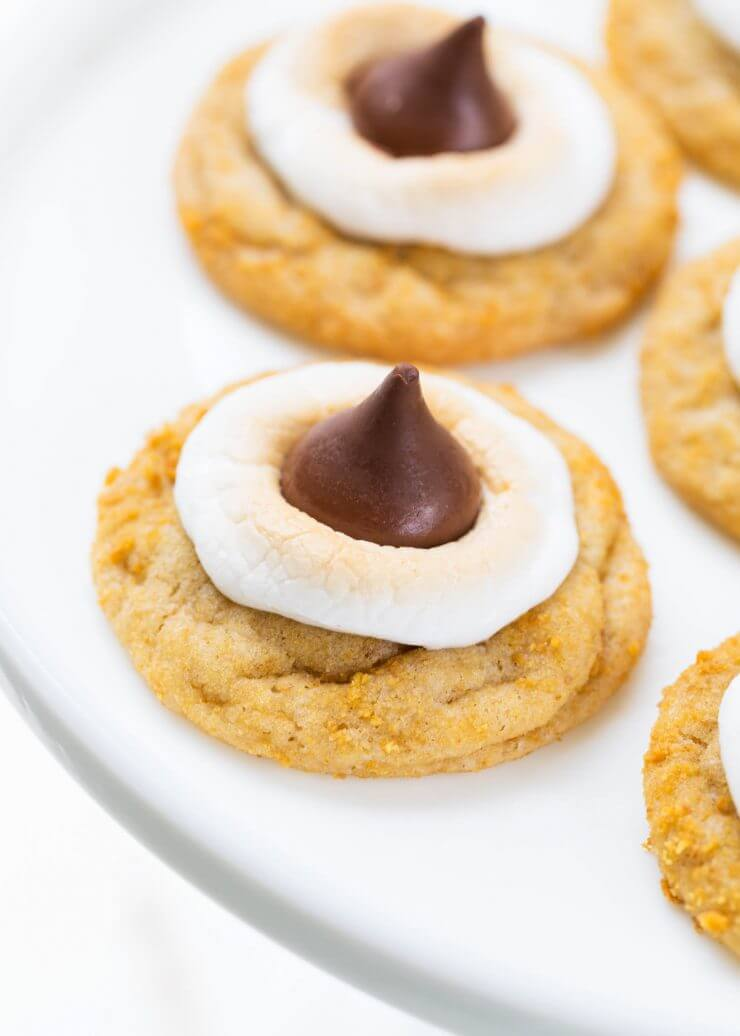 Best of 2016... July: S'mores Cookies