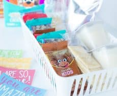 Five Lunchbox Packing Tips... get ready for back-to-school with these great tips to help organize lunch packing!