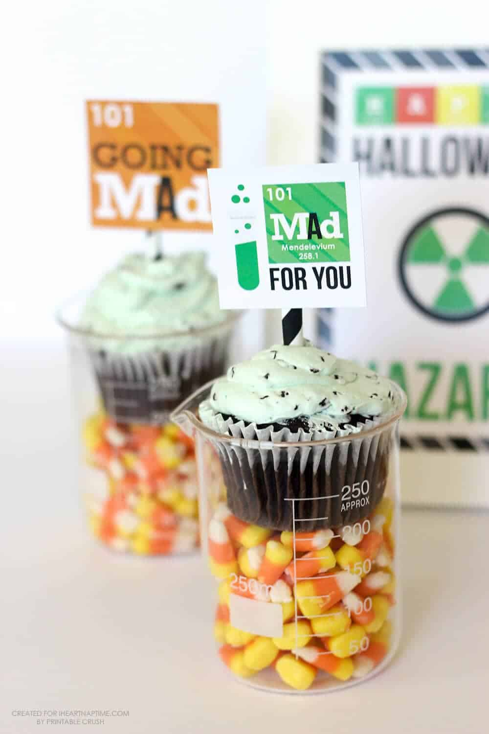 These Mad Scientist Halloween Party Printables are perfect for a little get-together! Grab some beakers and cupcakes to recreate this simple party idea!