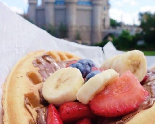nutella waffle with fresh fruit at magic kingdom