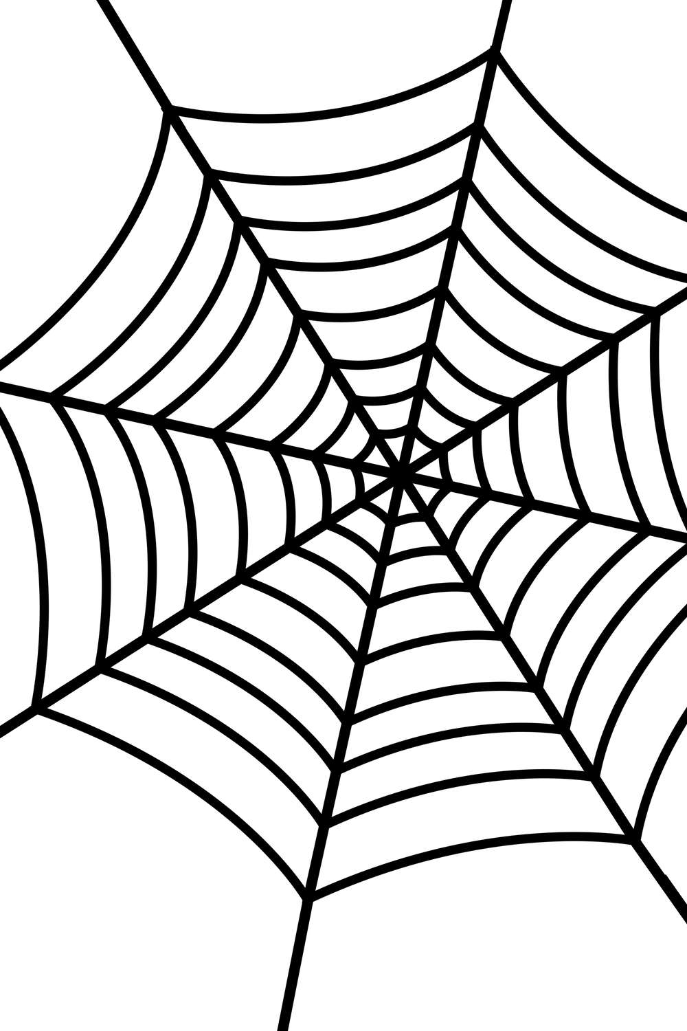 Sassy image within printable spider web