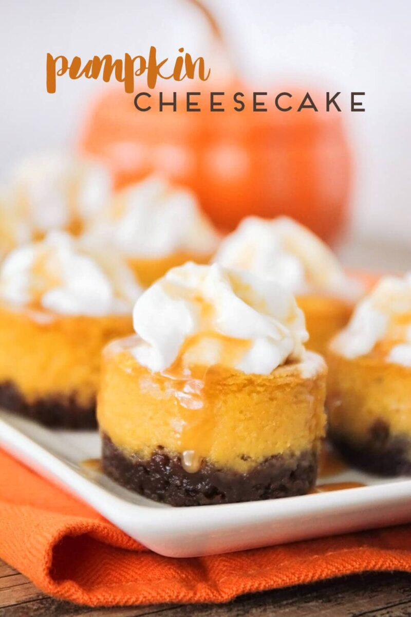 mini pumpkin cheesecakes on plate