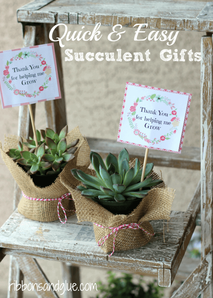Mother's Day Easy Succulent Gifts + 25 Free Mother's Day Printables - Beautiful and easy gift ideas to honor the women who make the world go round!