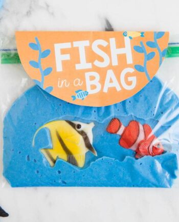 beach slime fish in a bag