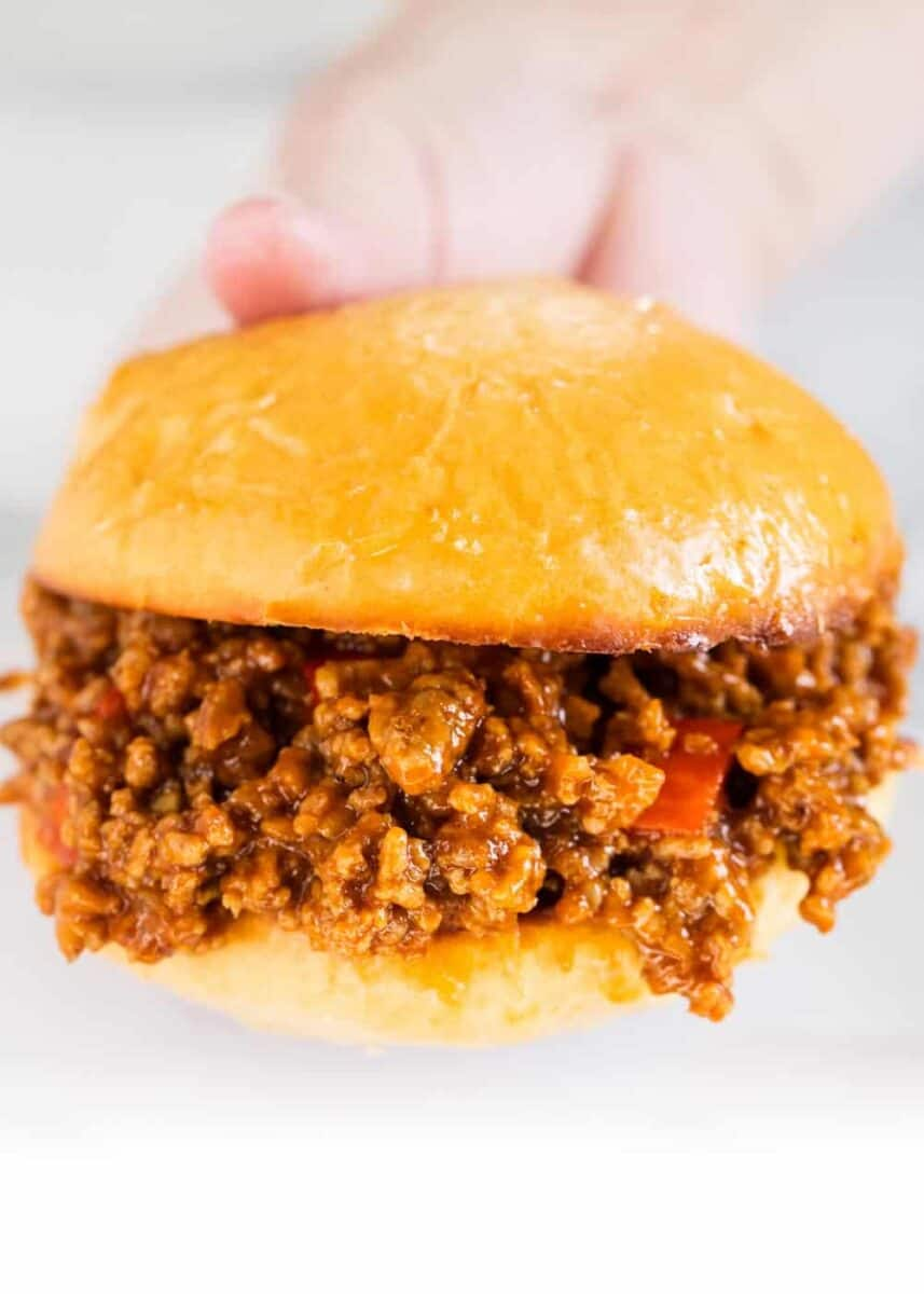 holding a sloppy joe sandwich