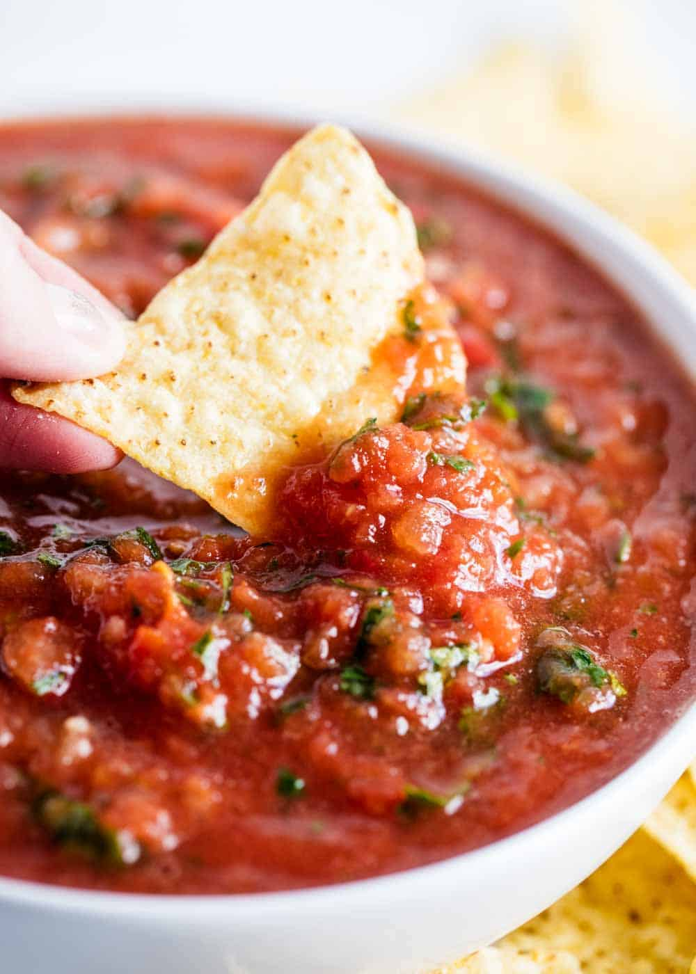 Homemade Salsa Recipe