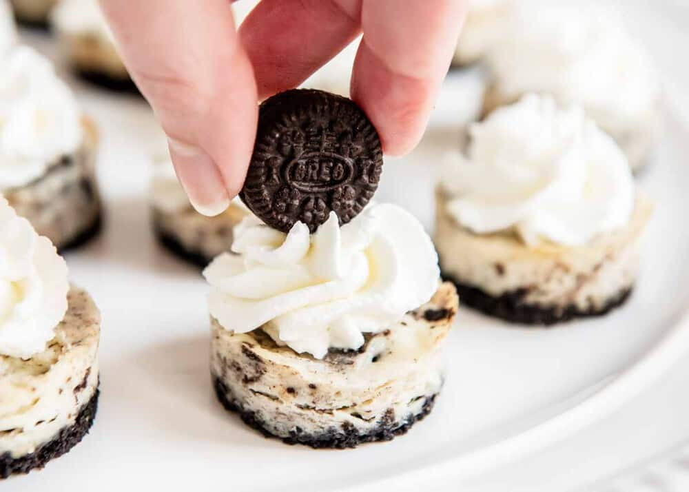 placing a mini oreo on top of mini oreo cheesecake bite