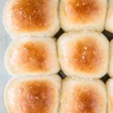 dinner rolls in pan