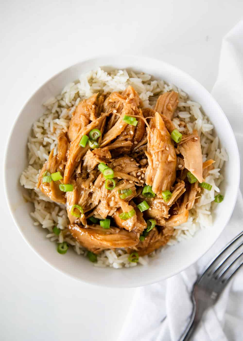 teriyaki chicken with rice and green onions