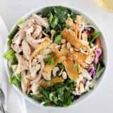 asian chicken salad in white bowl