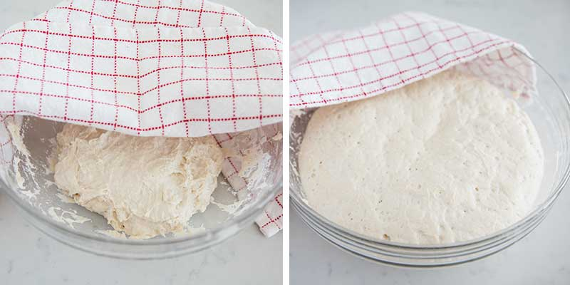 letting dough rise in bowl
