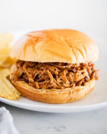 BBQ pulled pork sandwich on white plate
