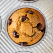 chocolate chip pumpkin muffin in pan