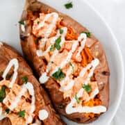 buffalo chicken sweet potato on white plate