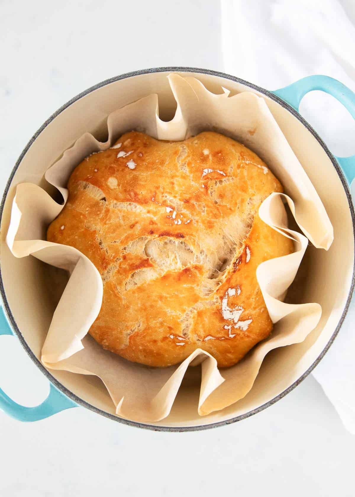 3 Ingredient Dutch Oven Bread No Knead I Heart Naptime