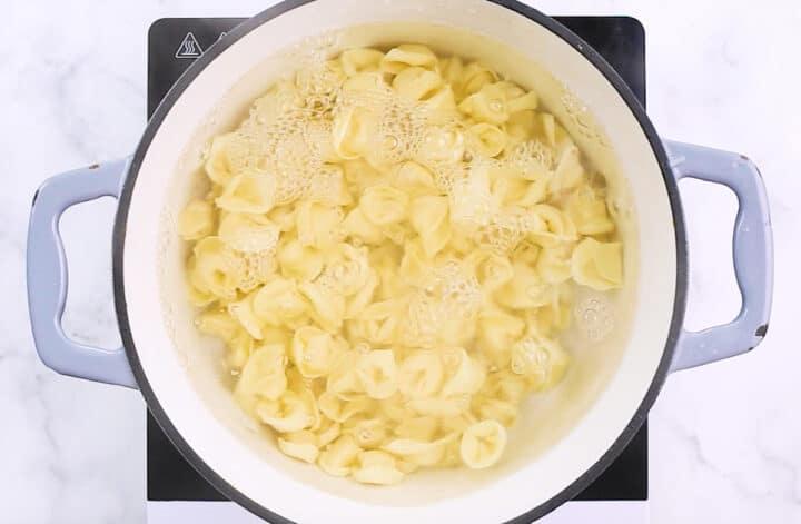 tortellini pasta cooking in pot
