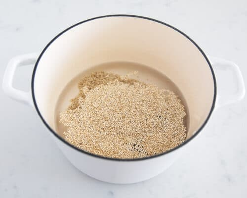 quinoa and water in pot