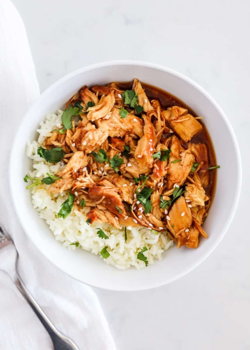 teriyaki chicken and rice in bowl