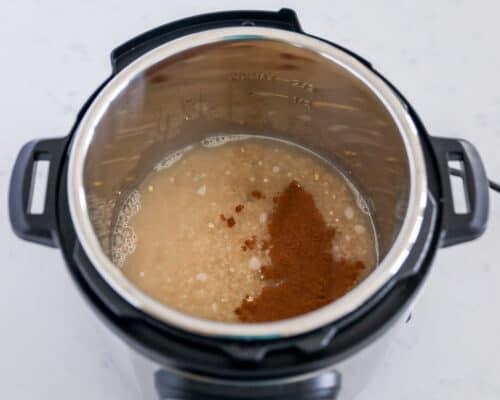 cooking steel cut oats in instant pot