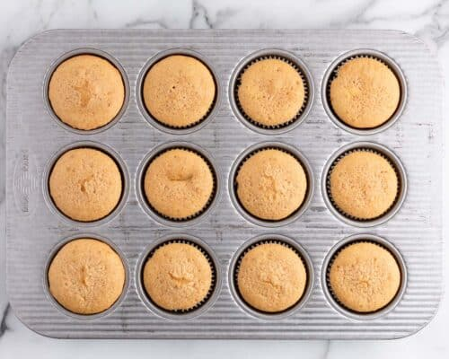 cupcakes in muffin pan