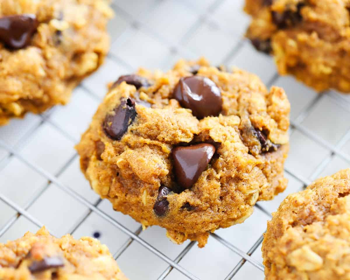pumpkin oatmeal chocolate chip cookie on cooling rack