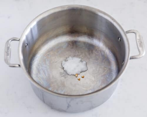 pot with coconut oil